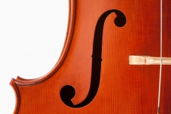 Cello Viateur Roy 2015